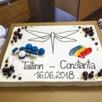 01-Nordica-TLN-Const