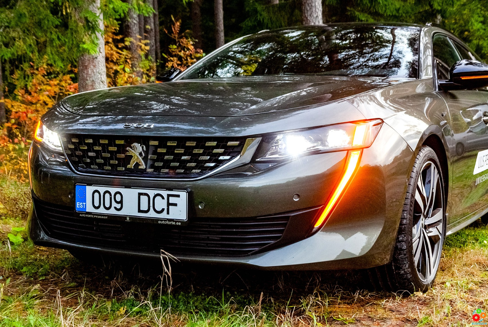 Новый Peugeot 508 – большой шаг вперед, вопреки тенденциям