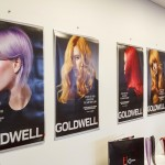07-Goldwell pigment-