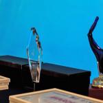 15_AmCham awards-2017