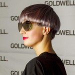 23-Goldwell pigment-