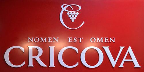 CRICOVA-logo-1