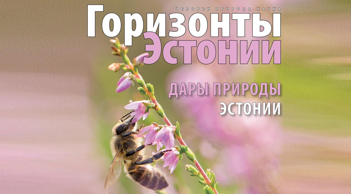 Альманах «Горизонты Эстонии 2020» школы получат бесплатно