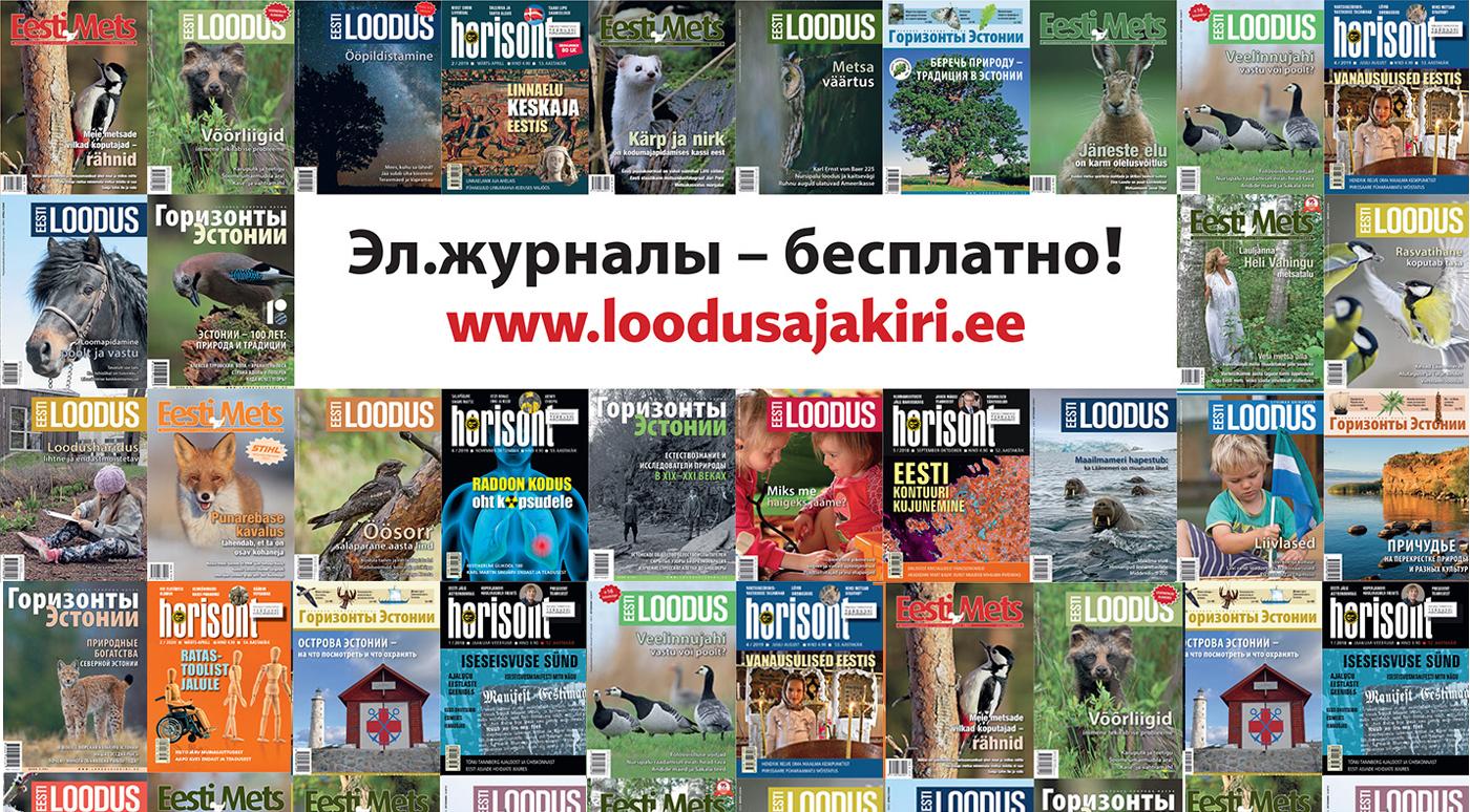 Читайте бесплатно электронные журналы Eesti Loodus и «Горизонты Эстонии»