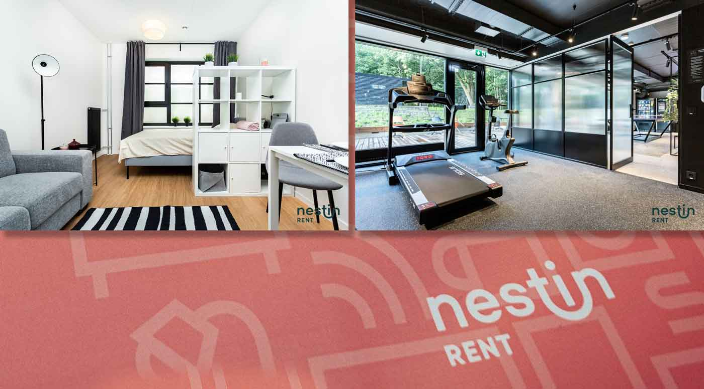 Nestin Rent — новый профессиональный бренд на рынке аренды