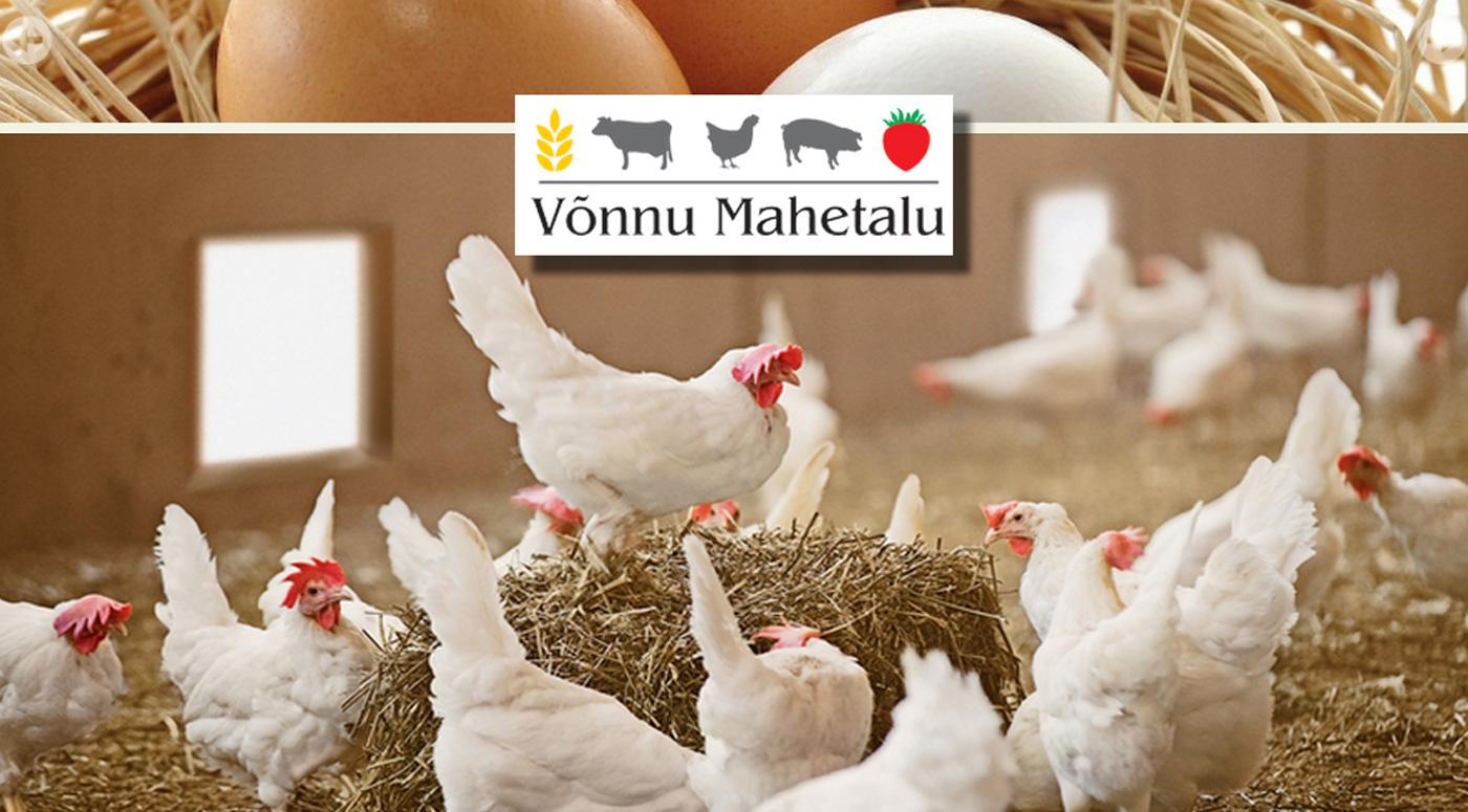 В магазинах Rimi теперь в продаже экологически чистые яйца с хутора Võnnu Mahetalu
