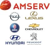 amserv logo marki