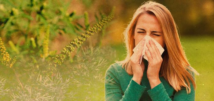 benu-allergia-