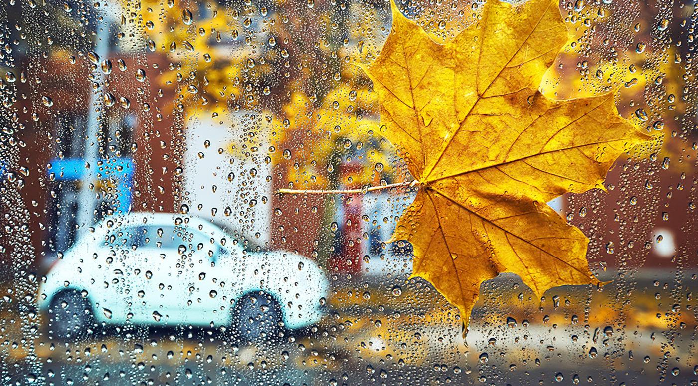 PZU: Пришла пора подготовить свои автомобили к зиме
