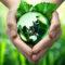 Safer Phosphates: почва в Эстонии – в списке самых чистых в Европе