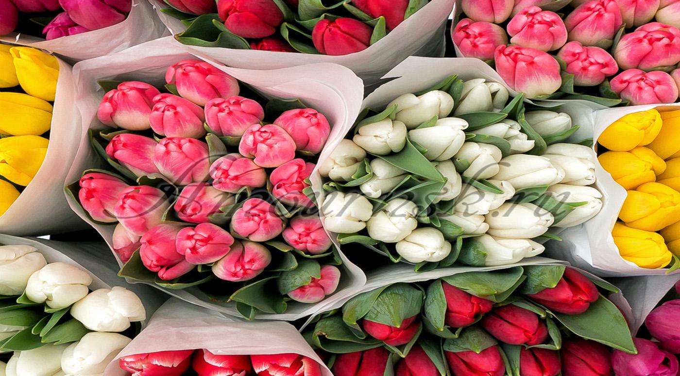 K-rauta: К женскому дню цветов покупается в четыре раза больше, чем к Дню Валентина