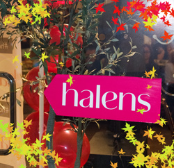 Осень 2014 по версии Halens