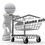 Hansabuss приобрел латвийское Tukuma Auto