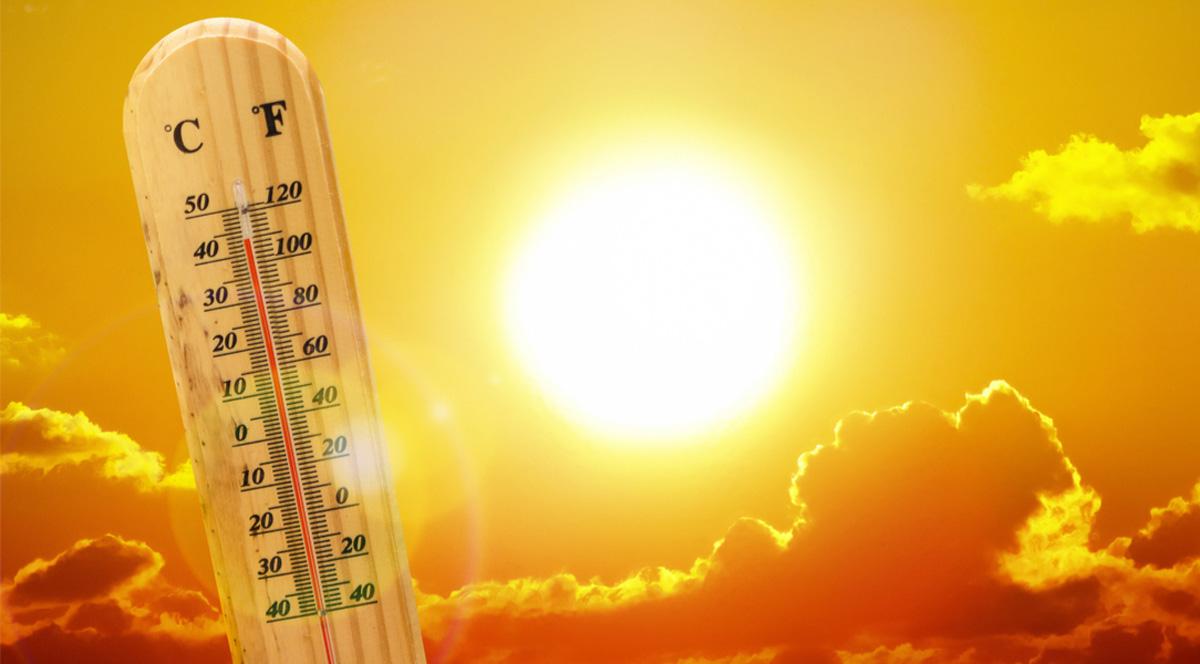 Huawei: 4 совета, как сохранить продуктивность труда в жаркие летние дни