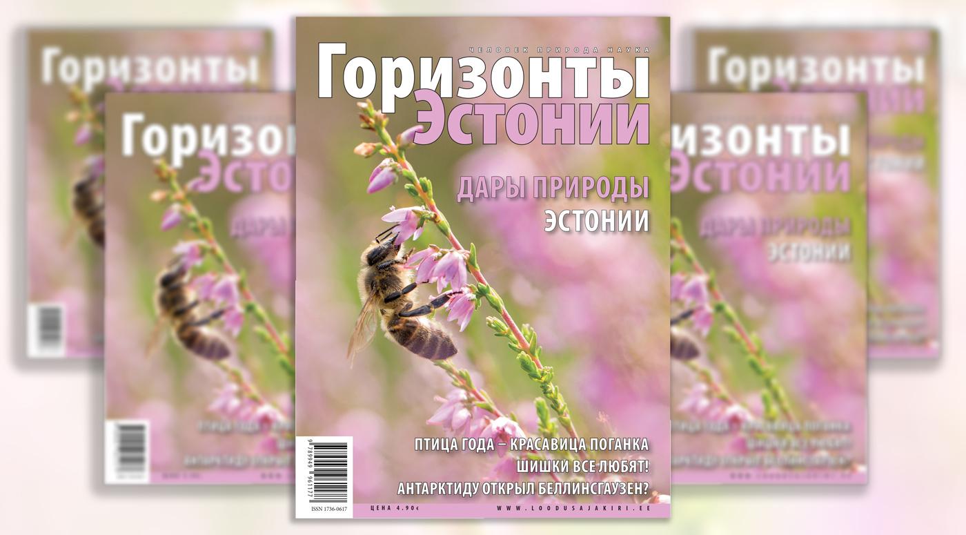 Журнал «Горизонты Эстонии» – теперь во всех школах