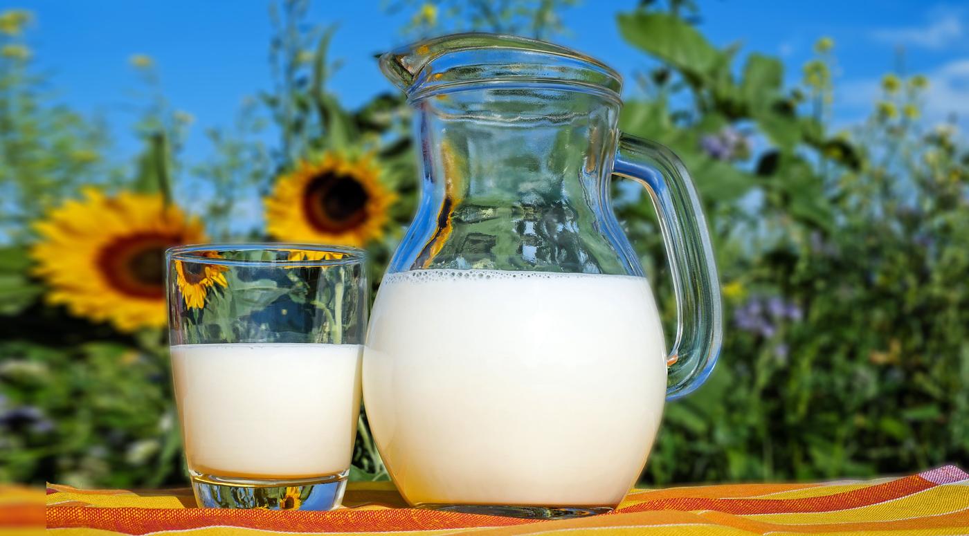 Магазинное молоко делают из порошка: Ученый развеивает мифы