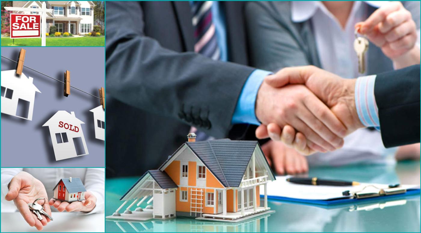 Kinnisvara24.ee — новый лидер на рынке коммерческой недвижимости