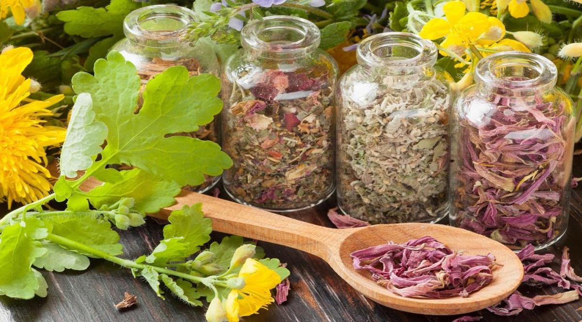 Benu: Лечебные травы могут смягчить многие проблемы со здоровьем